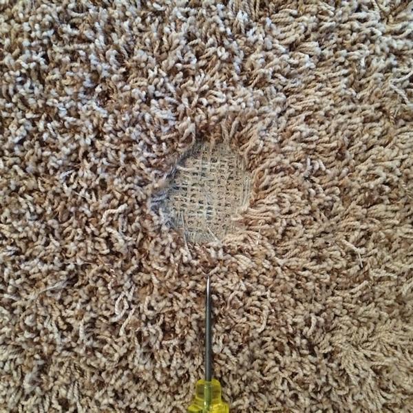 Spot Plus Carpet Care - Carpet damage repair 'before' photo